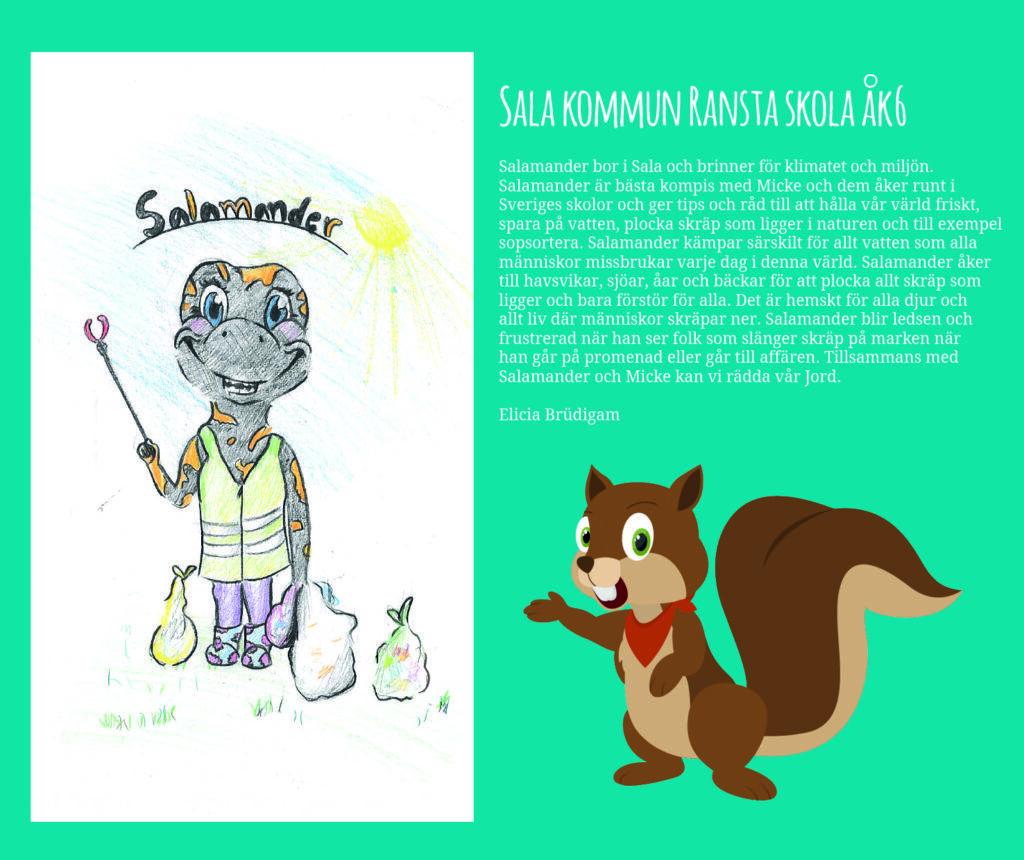 Sala Kommun Ransta Skola Åk 6 Salamander och Micke