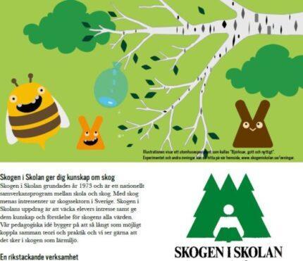 Skogen i Skolan